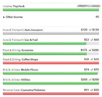 Mint budget screenshot